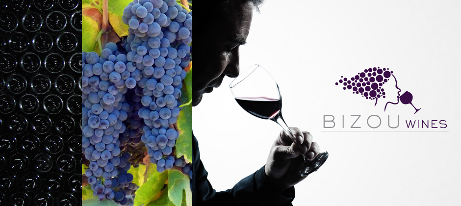Bizou-wines-wine-bottle-grapes-man-tasting-logo