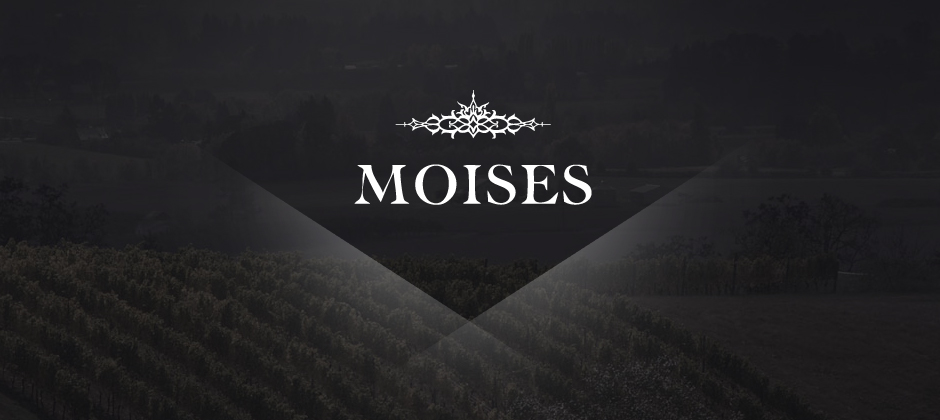 Moises-wines-branding-logo-vineyard