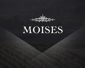 Moises Wines is a boutique winery located in Oregon. They needed to increase awareness of their wines as well as rebrand to better represent the exceptional quality of their wines. Because the wine is created by a well known doctor of the New Orleans area, we knew that the organic imagery needed to reflect the health conscious nature of the product while still exuding elegance.