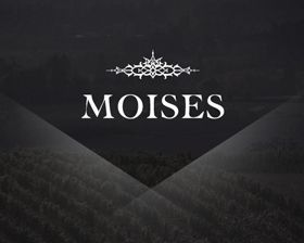 Moises-wines-marketing-website-design