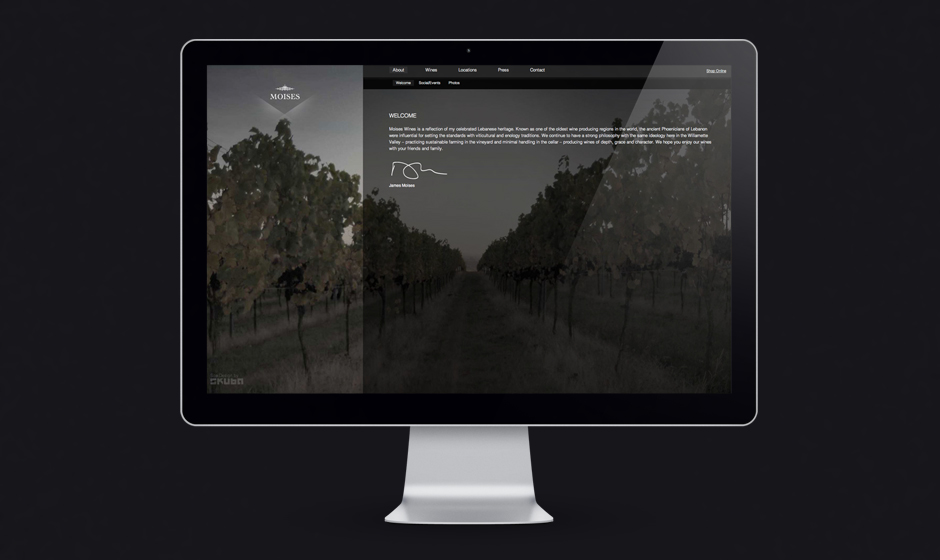 Moises-wines-website-welcome-vineyard